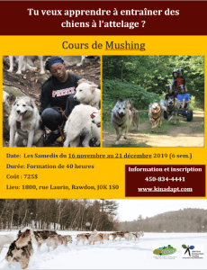 affiche_cours_mushing_FR